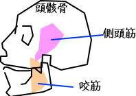 頭痛ケア6