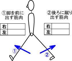 可動域チェック表1